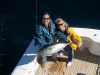 matt condon catches blackfin onboard 64 Viking Yacht